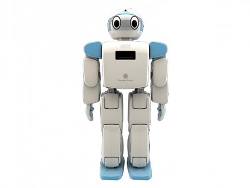 Робот-конструктор HOVIS Eco
