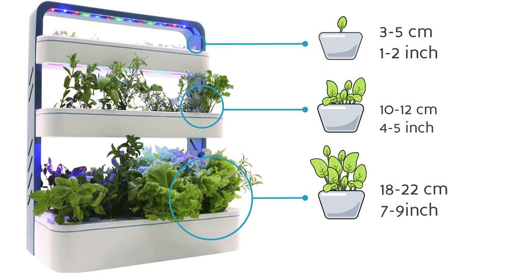 Освещение для выращивания зелени 484